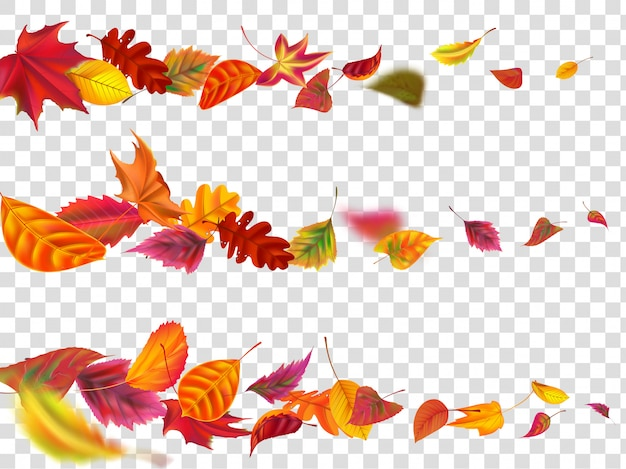 Flying autumn leaves. fall leaf banner, yellow garden leafage fly realistic  illustration set