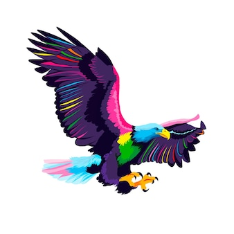 Flying bald eagle from multicolored paints splash of watercolor colored drawing realistic