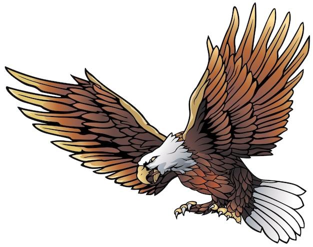 Летающий белоголовый орлан иллюстрация