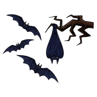 Flying bat, scary halloween sketch illustration.
