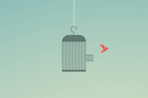 Flying bird and cage freedom concept