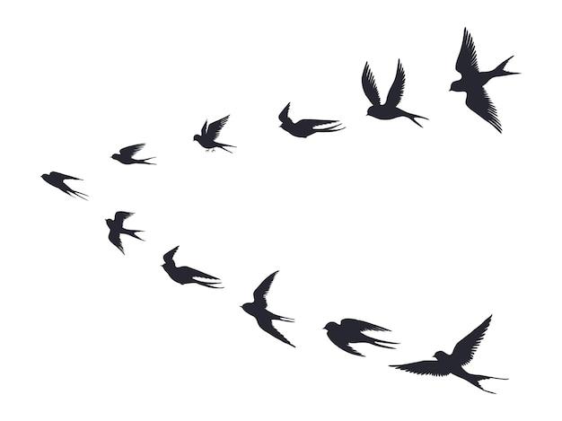 飛んでいる鳥の群れのシルエット。白い背景で隔離のツバメ、カモメまたは海鳥。空を飛んでベクトル鳥アイコンセット群れ