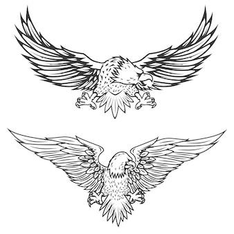 Flying black eagle