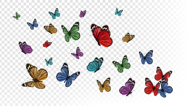 飛んでいる蝶。透明な背景に分離されたカラフルな蝶。