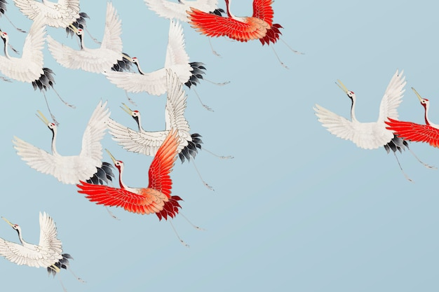 Flying cranes illustration