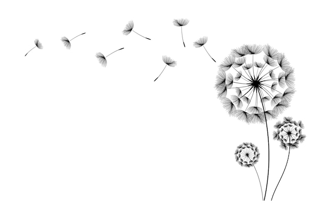 Flying dandelion seeds vector icon vector isolated decoration element from scattered silhouettes