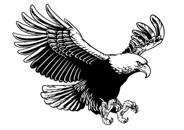 Flying eagle in hand drawing black and white style