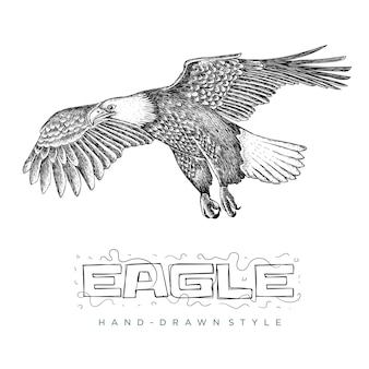Flying eagle vector. hand drawn animal illustrations