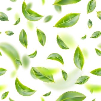 Flying fresh green tea leaves  background
