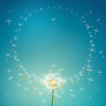 Flying parachutes from dandelion forming round floral frame background