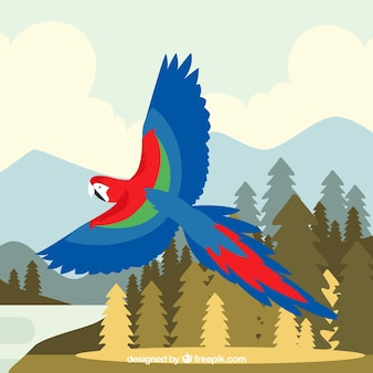 Flying parrot background