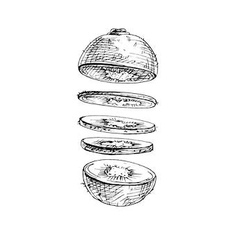 Flying pieces of fresh kiwi. vector vintage hatching illustration.