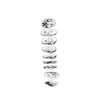 Летающие кусочки свежих огурцов. векторные винтажные штриховки черные иллюстрации. изолированные на белом фоне. рисованный дизайн