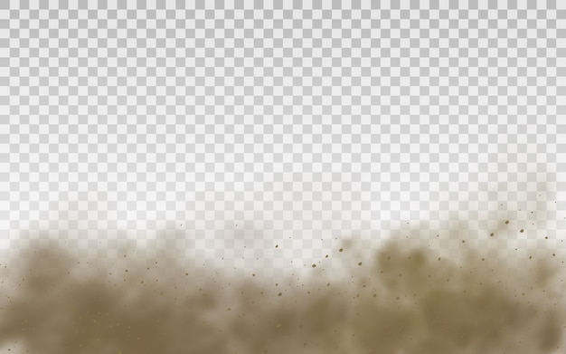 Flying sand. dust cloud. brown dusty cloud or dry sand flying with a gust of wind, sandstorm. brown smoke realistic texture  illustration.