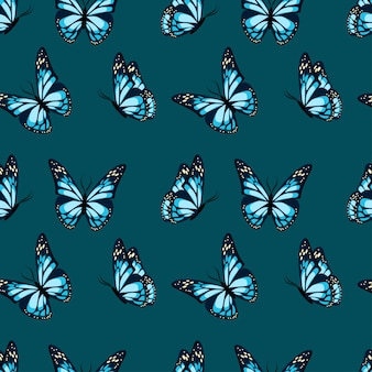 Flying and sitting butterflies