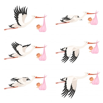 Flying stork frame animation. bird delivery newborn baby carry  cartoon characters isolated