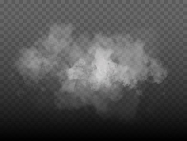 안개 또는 연기 절연 투명 특수 효과 흰색 벡터 흐림 안개 또는 스모그 배경 vec...