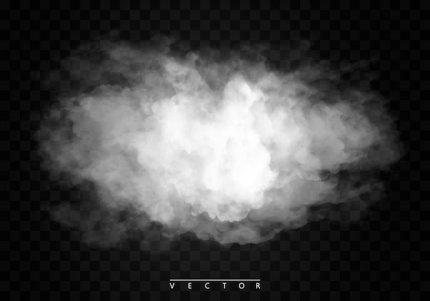 Fog or smoke isolated  special effect. white vector cloudiness, mist or smog.