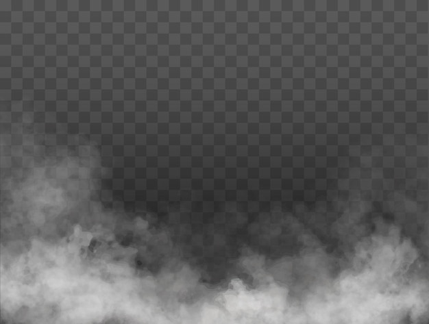 Fog or smoke isolated transparent special effect white vector cloudiness mist or smog background