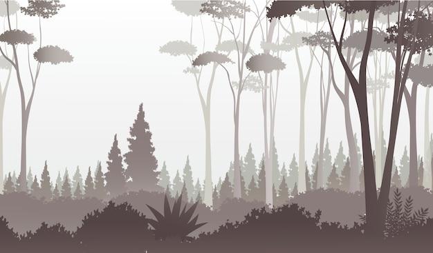 Туманный вид леса