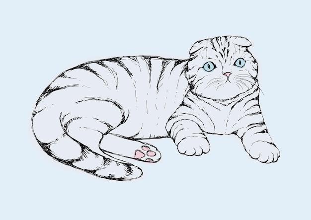 Сложите кота - нарисованную рукой иллюстрацию вектора. лежит полосатый котенок с ушками. реалистичный портрет домашней кошки.