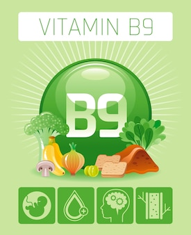 Folic acid vitamin b9 rich food icons with human benefit. healthy eating flat icon set. diet infographic chart poster with liver, banana, onion, bread.