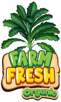 녹색 양배추와 단어 신선한 농장을위한 글꼴 디자인