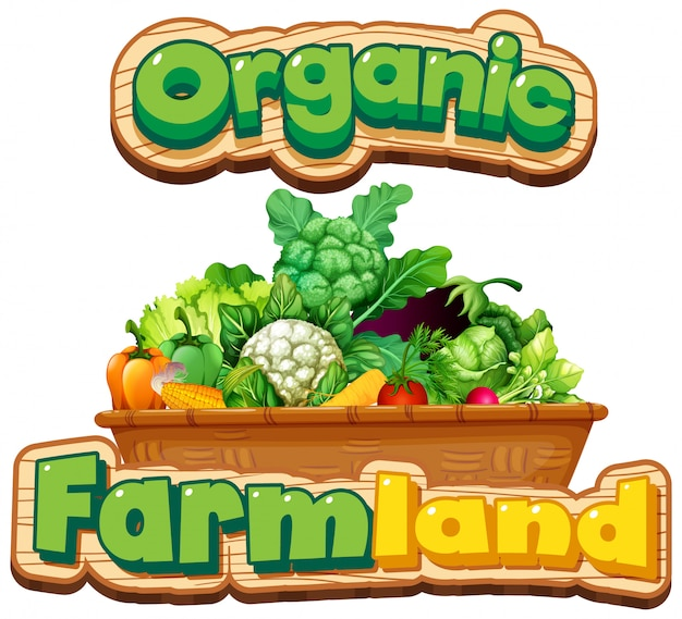 バスケットの多くの野菜と有機単語のフォントデザイン