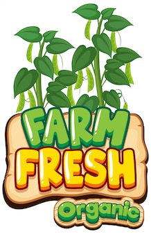 Font design for word fresh farm with green beans