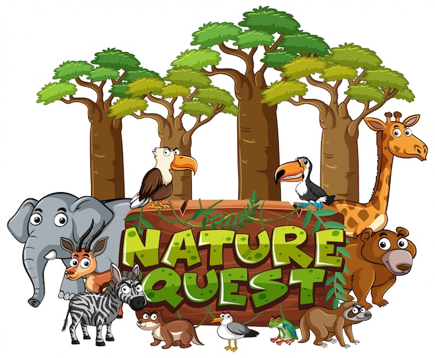 Font design for word nature quest with animals in forest