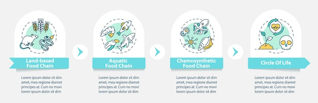 Food chain vector infographic template. biological process. biodiversity presentation design elements. data visualization with 4 steps. process timeline chart. workflow layout with linear icons