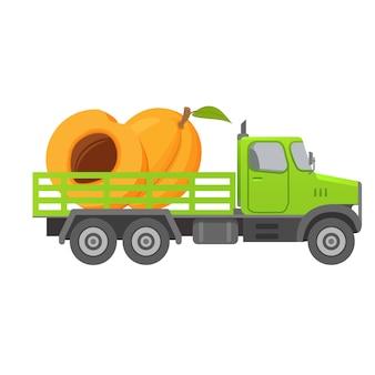 Доставка еды грузовиком, сбор абрикосовых фруктов, машина.