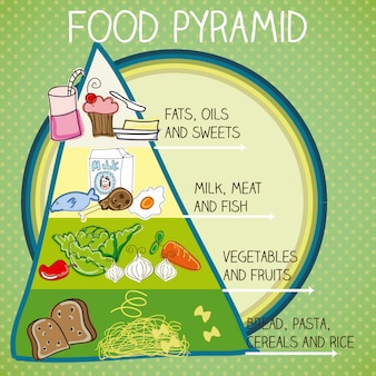 The food pyramid colorful vector illustration with text