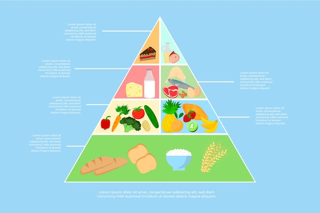 食品ピラミッド栄養コンセプト