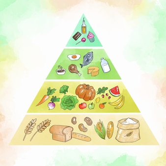Food pyramid for nutrition