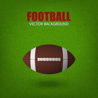 芝生のフィールドでサッカーボール。
