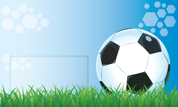Football in grass stadium blue background.