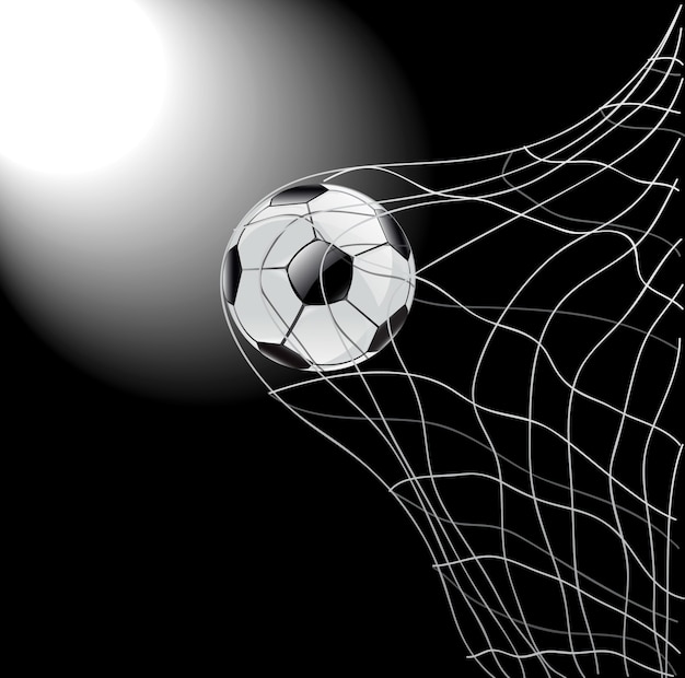 Football and net vector