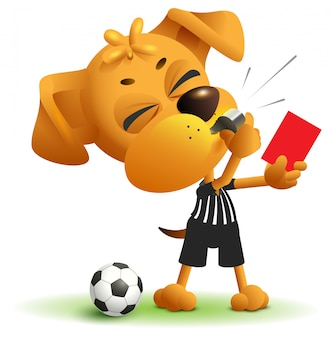 Football referee dog shows red card. soccer arbiter whistles