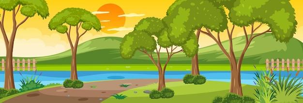 日没時の川の水平方向のシーンに沿った森と多くの木々