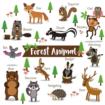 Forest animal cartoon with animal name