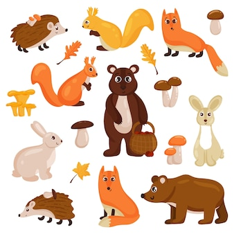 Forest animals, bear, fox, hare, squirrel, hedgehog, mushrooms and autumn leaves. vector cartoon style.