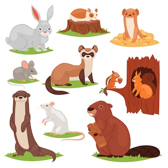 Forest animals  cartoon animalistic characters squirrel in hollow and wild beaver or bunny hare in woodland illustration