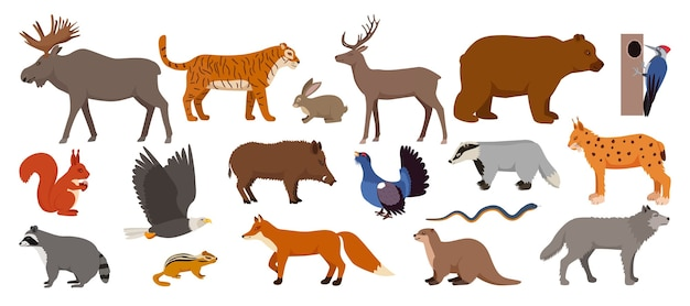 Forest animals isolated on white set of illustration