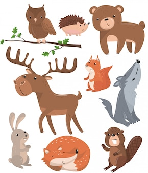森の動物セット、森のかわいい動物フクロウ鳥、クマ、ハリネズミ、鹿、リス、オオカミ、ウサギ、キツネ、ビーバー漫画イラスト