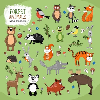 森の動物セット