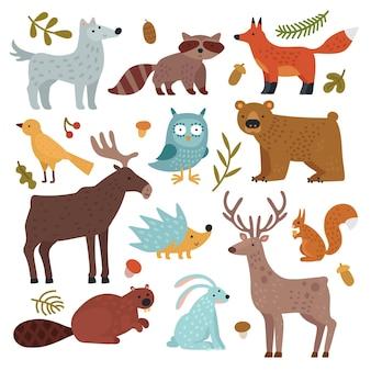 森の動物。オオカミ、アライグマとキツネ、クマとフクロウ、鹿、リスとハリネズミ、ノウサギとビーバー、ワピチ。