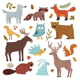 Forest animals. wolf, raccoon and fox, bear and owl, deer, squirrel and hedgehog, hare and beaver, elk.
