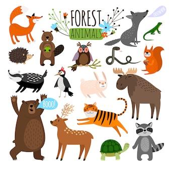 숲 동물. 숲 귀여운 동물 무스 또는 사슴과 너구리, 여우와 곰 같은 드로잉 벡터 일러스트 레이 션을 설정