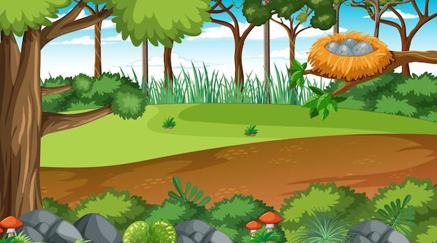 낮 풍경 장면에서 숲